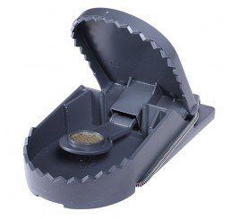 SWISSINNO RAT TRAP SUPERCAT PLASTIC