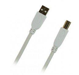 PUDNEY USB A PLUG TO USB B PLUG V2.0 2 METRE WHITE